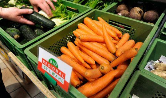 Start-up Frischepost Macht Den Hofladen Zum Online-Supermarkt