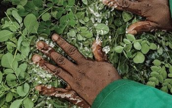 Meet The Woman Behind A $2 Million Superfood Business Helping Women Farmers In Africa